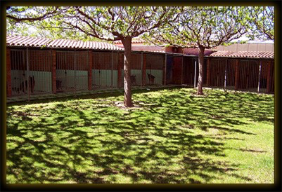 canales residencia canina herrkan